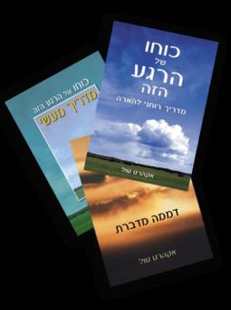מארז ספרי אקהרט טול